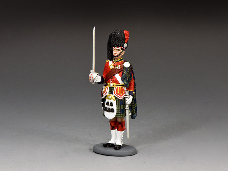 Black Watch Officer At Attention